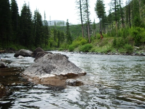 "My ""home water,"" flowing from the Scapegoat Wilderness in Montana."